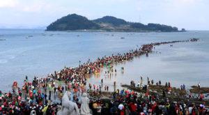 Lễ hội qua biển Jindo
